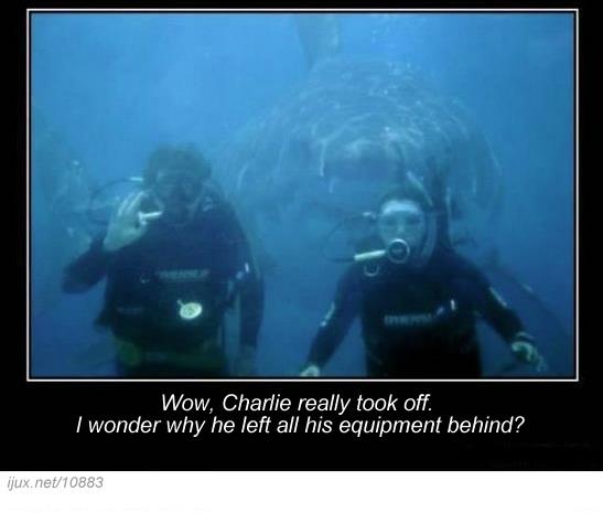 scuba-divers-with-surprise